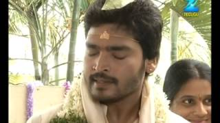 Varudhini Parinayam - Episode 255 - Best Scene