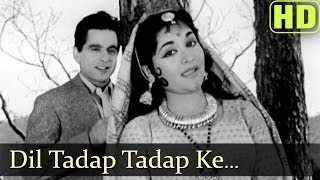 Dil Tadap Tadap Ke (HD) - Madhumati Songs - Dilip Kumar - Vyjayantimala - Lata Mangeshkar - Mukesh