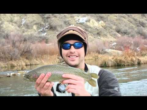 Fly Fishing the San Juan River in New Mexico for Trophy Trout