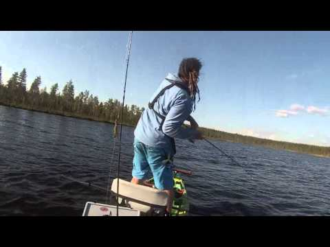 Kayakfishing with frogs for pike- Fail Compilation
