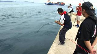 Shore Jigging Taiwan -  SEA BASS ROD TEST