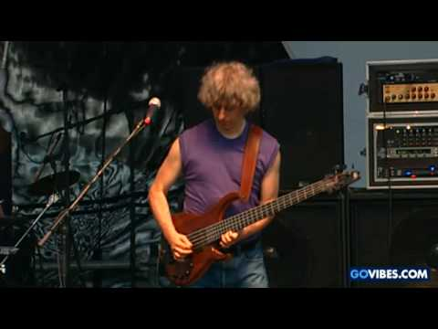 Mike Gordon - Meat