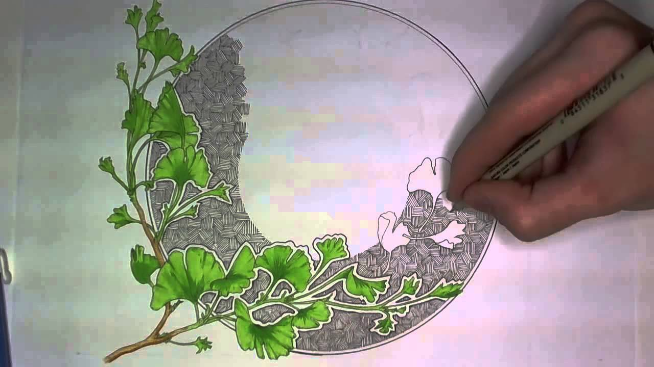 Ginkgo Leaves Drawing YouTube