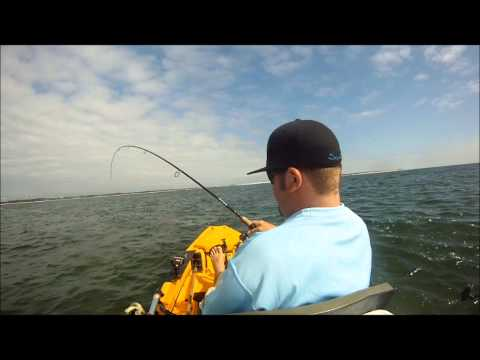 pensacola pass redfish 2/5/2012 kayak fishing