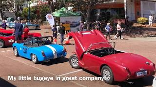 Classic Cars - Austin Healey National Rally Display Day Perth 2019