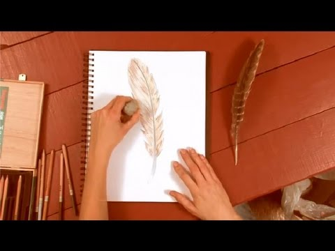 Colored Pencil Feather a Colored Pencil How to