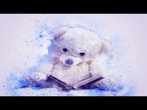 Az időjós medve