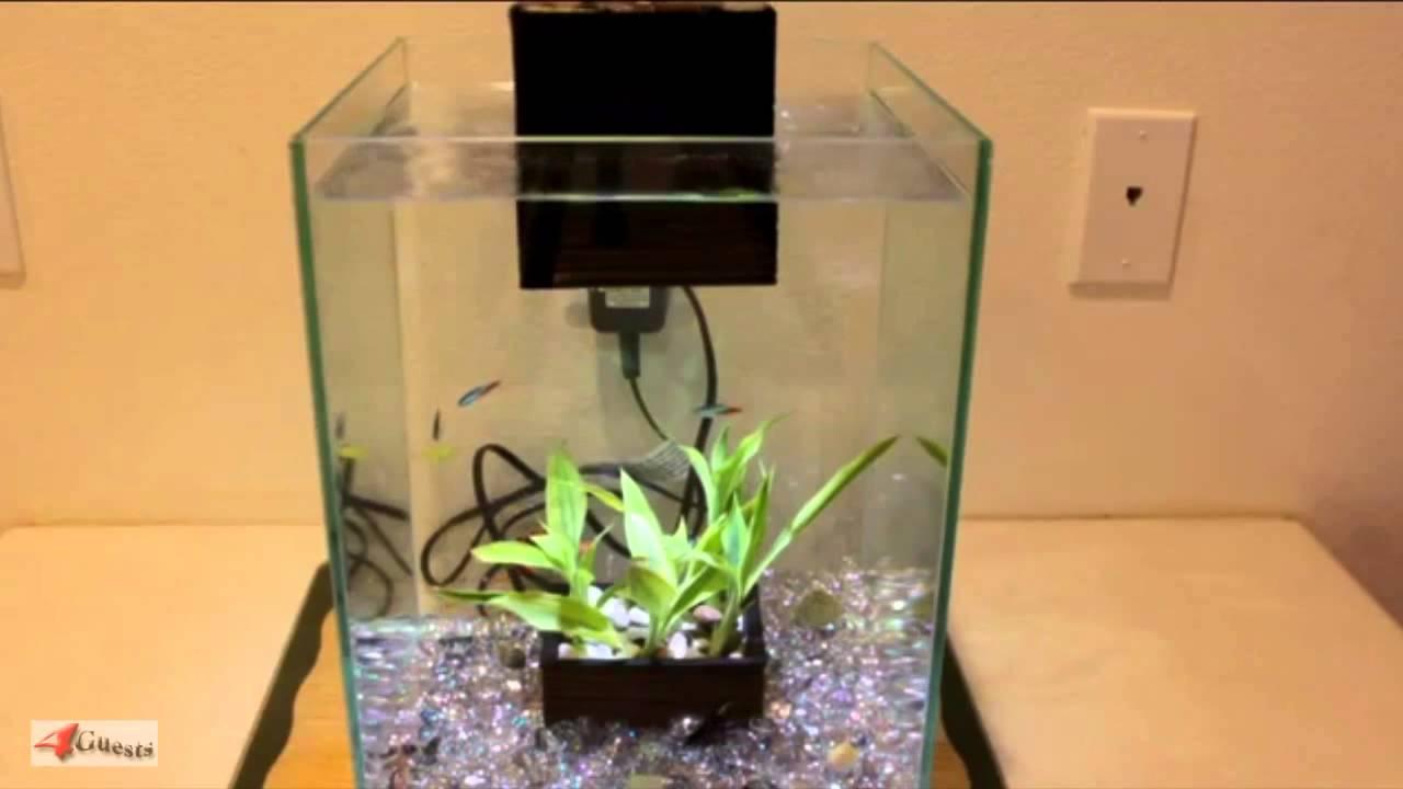 Fluval chi aquarium setup for video purposes only youtube for Fluval chi fish tank