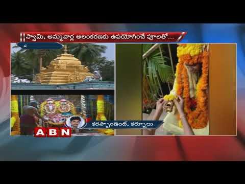 శ్రీశైలం మల్లన్న సన్నిధి లో అపచారం | Disservice at Srisailam Mallanna Temple