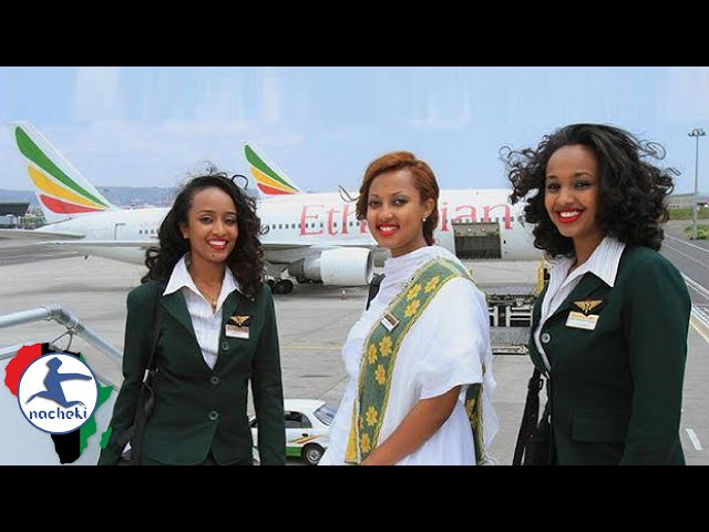 10 Best Rated African Airlines in The World  Skytrax 2017