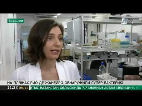 Около берегов Рио-де-Жанейро найдена супербактерия thumbnail