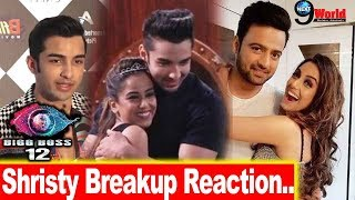 Bigg Boss 12: Rohit Suchanti Talks about Shristy Rode's Breakup because of him? | TV-Video Awards