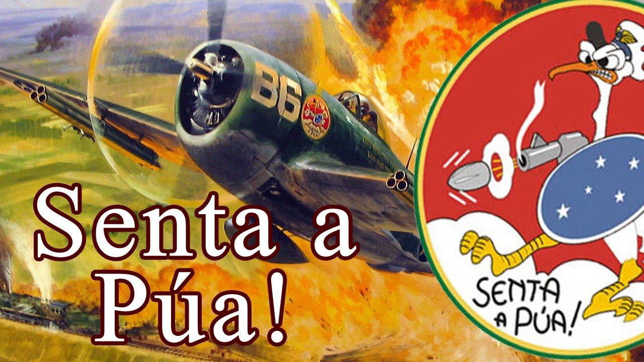 Vídeo:  70 anos do Dia da Aviação de Caça – Homenagem da Força Aérea Brasileira