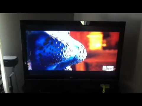 Epic Movie Mystique Scene http://mondemp3.com/video_o42MzaLWYbc____Blue-Girl-Scene-in-Epic-Movie.html