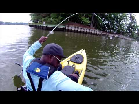 Kayak Fishing for Redfish/Red Drum/Puppy Drum