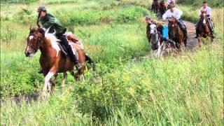 Watch Cowboy Junkies Two Soldiers video