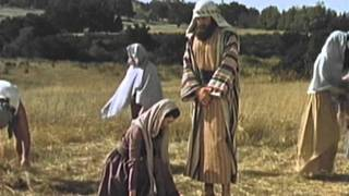The Holy Bible - Ruth - A Faithful Woman