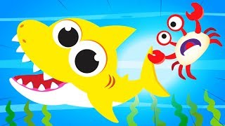 Baby Crab, Where is Your Shell? | Fun Song with Baby Crab and Baby Shark | Fun Songs by Little Angel