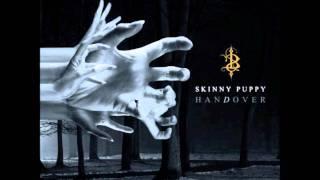 Watch Skinny Puppy Icktums video