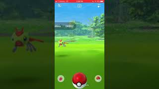 Pokémon GO Community Day #1, January 20 - Crazy Yanma Flying Off the Screen!