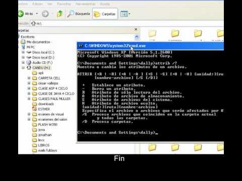 Como recuperar Archivos Ocultados por Virus xD!!!