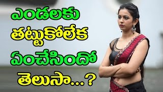 Actress Rakul Preet Takes Care On Shooting Spot Due To Sunstroke