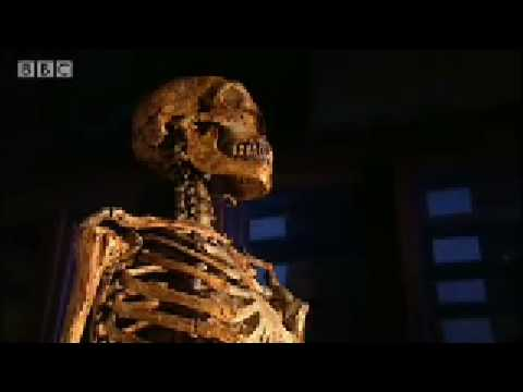High-pitched voice theory - Neanderthal - BBC science
