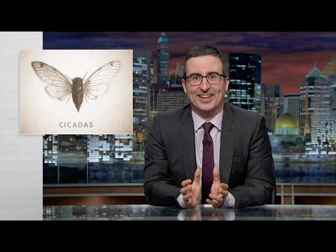 Last Week Tonight with John Oliver: Cicadas (Web Exclusive)