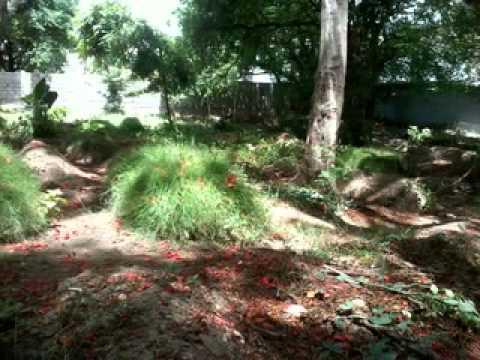 Tera Kiya Banega Bande By Md Faizan From Ambur video