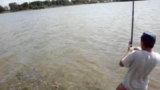 ловля карпа в клинском рыбхозе
