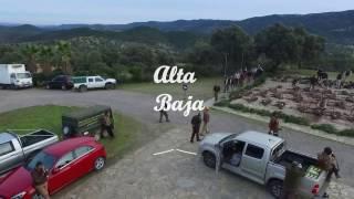 Alta Baja