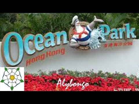 Exploring Hong Kong: Roller coasters and Aquarium in Ocean Park | Alybongo