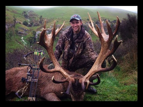 Red Stag Archery Hunting New Zealand - Peel Forest Safaris