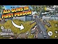 All Guns' in First Person View! Rules of Survival