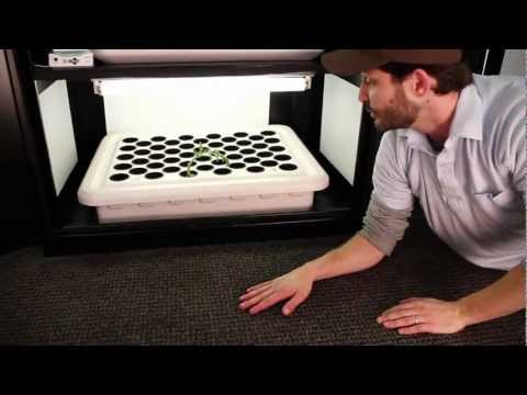 Hydroponic Grow Box   Grow Box by SuperCloset