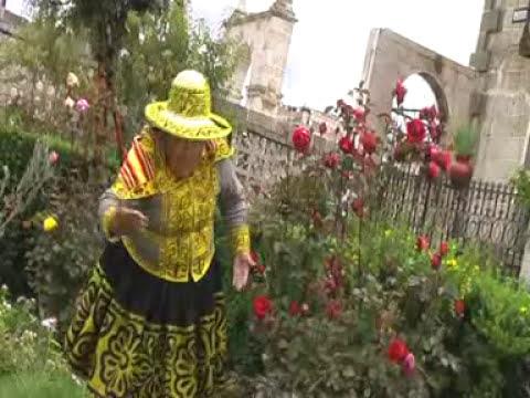 Autenticos Carnavaleros de Chumbivilcas - Rosas Tika