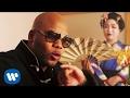 Flo Rida - Zillionaire [Official Video] mp3 indir