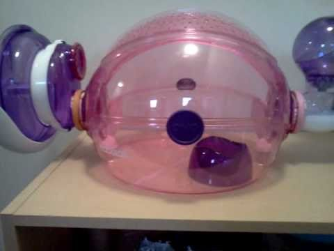Hamster set up (habitrail ovo home pink edition)