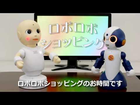 Sota Robot, CommU Robot - Hiroshi Ishiguro