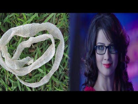 Naagin 2: शेषा लेगी शिवांगी की जान | Shivangi Dies Because Of shesha thumbnail