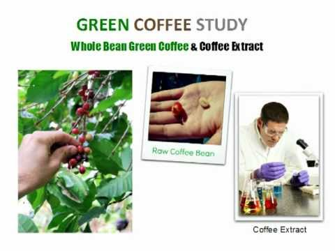 free trial cambogia garcinia and green cleanse dieting green tea