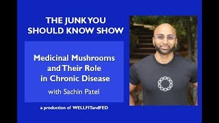 Medicinal Mushrooms and Their Role in Chronic Disease