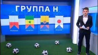 Группа Н: о шансах Польши, Сенегала, Колумбии и Японии - Россия 24