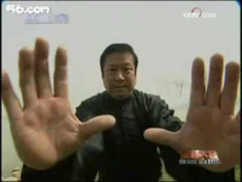 Hsing Yi Tiger Technique.wmv Image 1