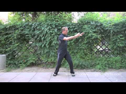 Chen Tai Chi:  Training Video 1 Image 1