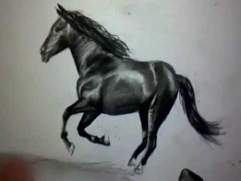 Comment dessiner un cheval au galop tutoriel youtube - Dessins de chevaux facile ...