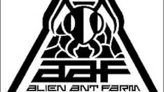 Watch Alien Ant Farm Crickets video