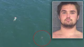 Suspect Fleeing Police Jumps Into Ocean And Swims Dangerously Close to a Shark