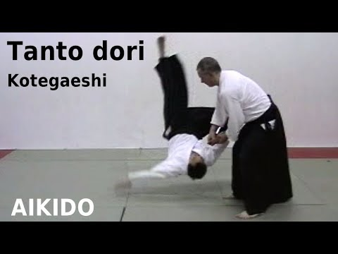 Aikido knife defense - kotegaeshi Image 1