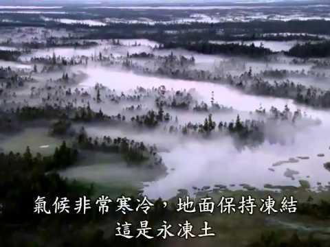 轉載:盧貝松之搶救地球~精彩影片~您不可不知的危機~!